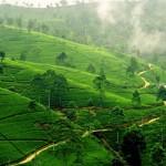 السياحة في بنجلاديش والتي لا نعلم عنها الكثير