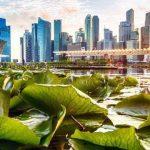 سنغافورة سياحة التسوق والتاريخ النابض بالحياة