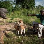 حديقة حيوان باماكو