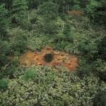 محمية بانكو
