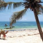 شاطئ بامبورى