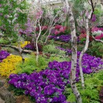 حديقة نباتات ملبورن الملكية