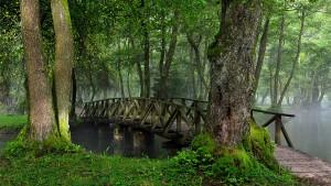 منبع نهر البوسنة
