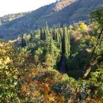 حديقة النباتات الوطنية في جورجيا