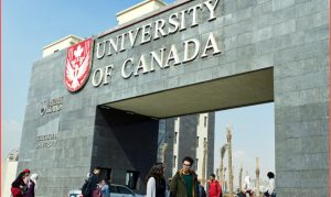 الدراسة عن بعد مجانا في كندا