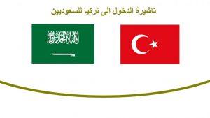 مكتب استخراج فيزا تركيا