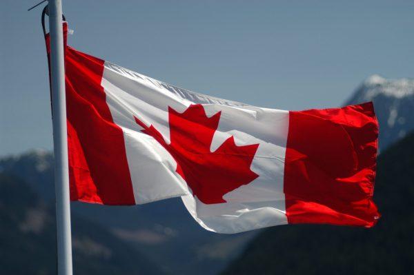 أهم التخصصات العلمية في الدراسة عن بعد مجانا في كندا