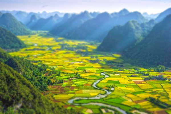 نبذة عن فيتنام